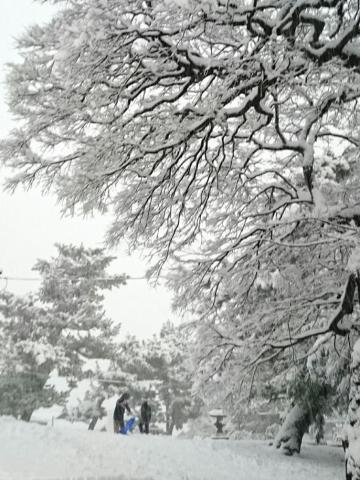 2018_snow01.jpg