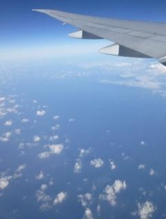 翼の下は青空