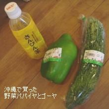 沖縄で買った野菜パパイヤとゴーヤ(さんぴん茶)