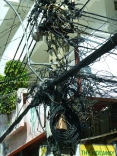 電線の巣?