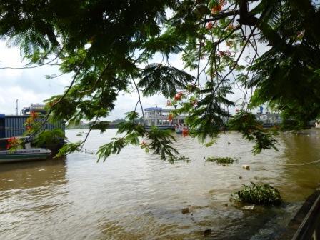サイゴン川のほとり