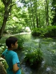 渓流沿いの遊歩道